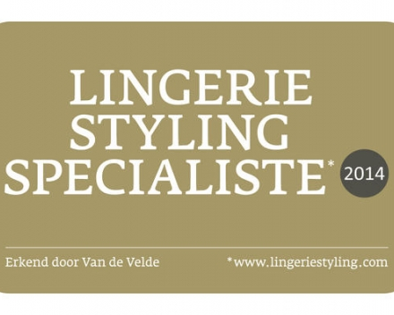 Lingerie Styling